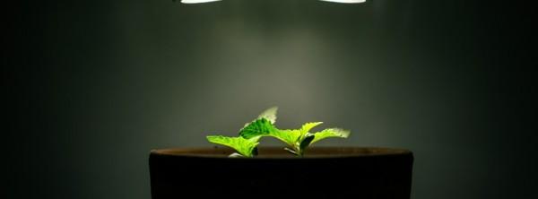 Facebook Cover Image 01418のFacebookカバー画像